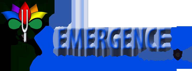 TheEmergenceProcess.com